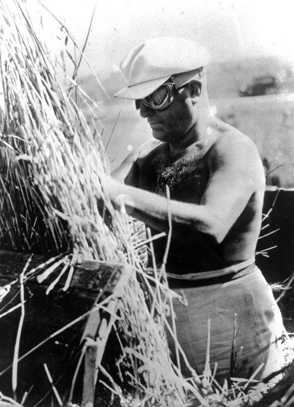 """Mussolini e la"""" battaglia del grano""""  PUBLIFOTO / OLYCOM"""